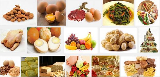 sumber-makanan-yang-mengandung-protein-tinggi