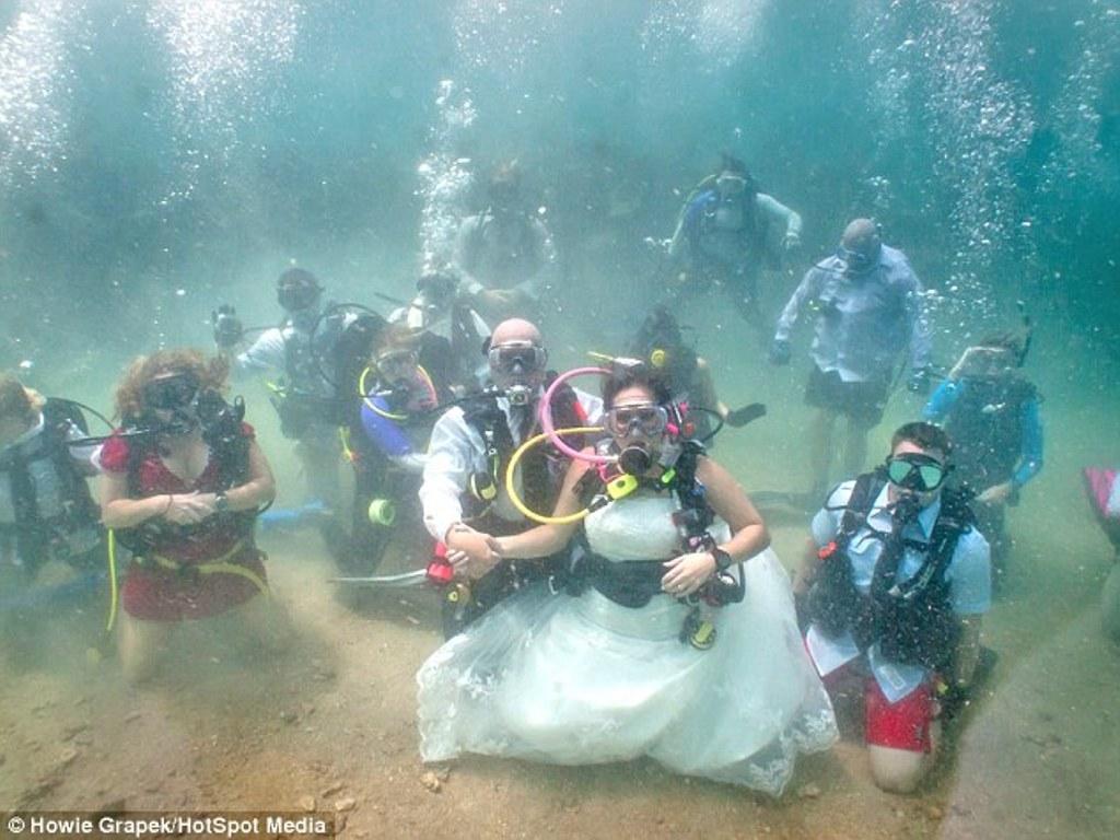 Ini Resepsi Pernihakan Yang Paling Unik Di Dunia, Ada di Dalam Lautan Hingga Bersama dengan Beruang