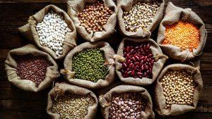 Kenapa Protein Sangat Penting Saat Melakukan Progam Menurukan Berat Badan