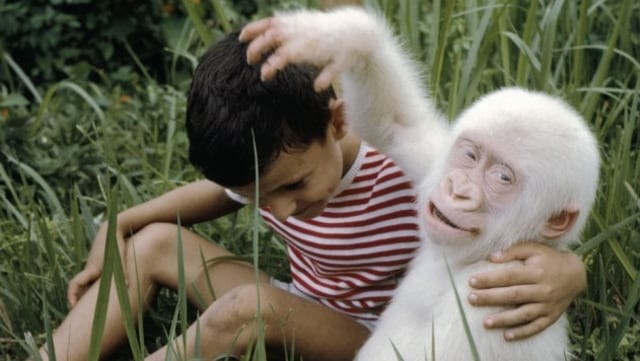 3 Hewan Albino Paling Unik Di Dunia